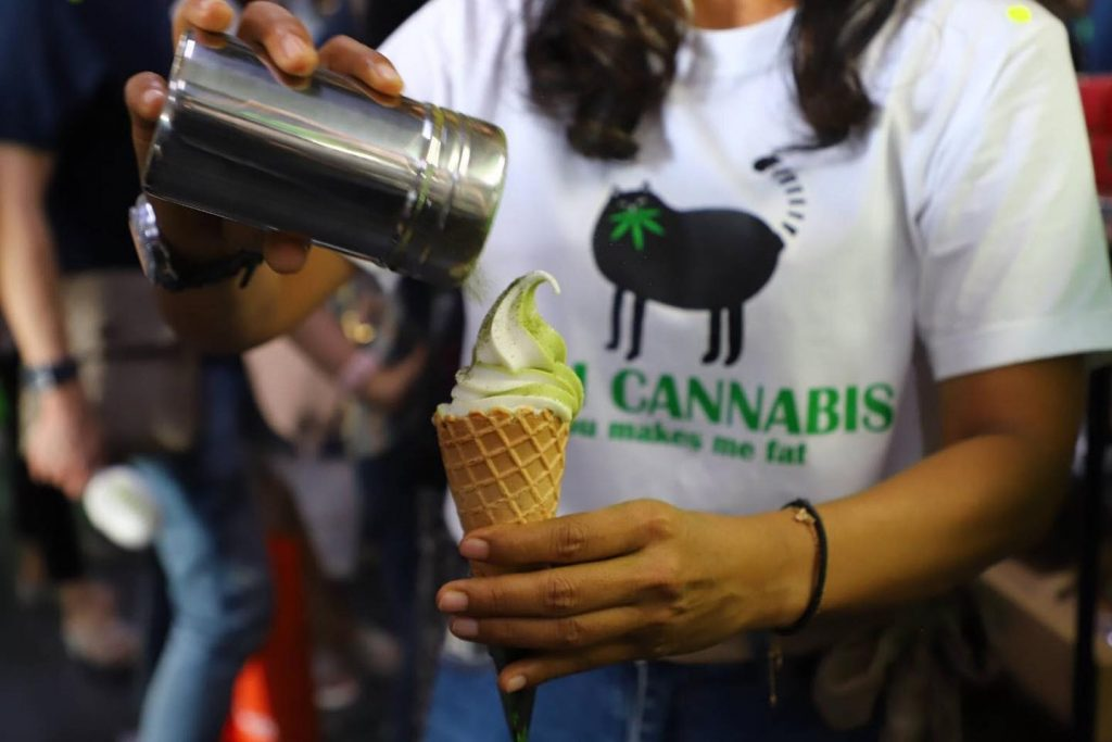'No one in Asia understands weed much better than the Thais': new money crop turning the kingdom green